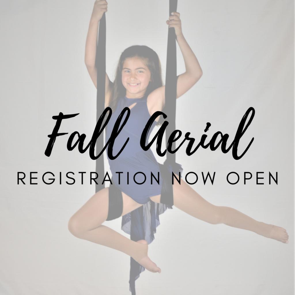 Fall Aerial